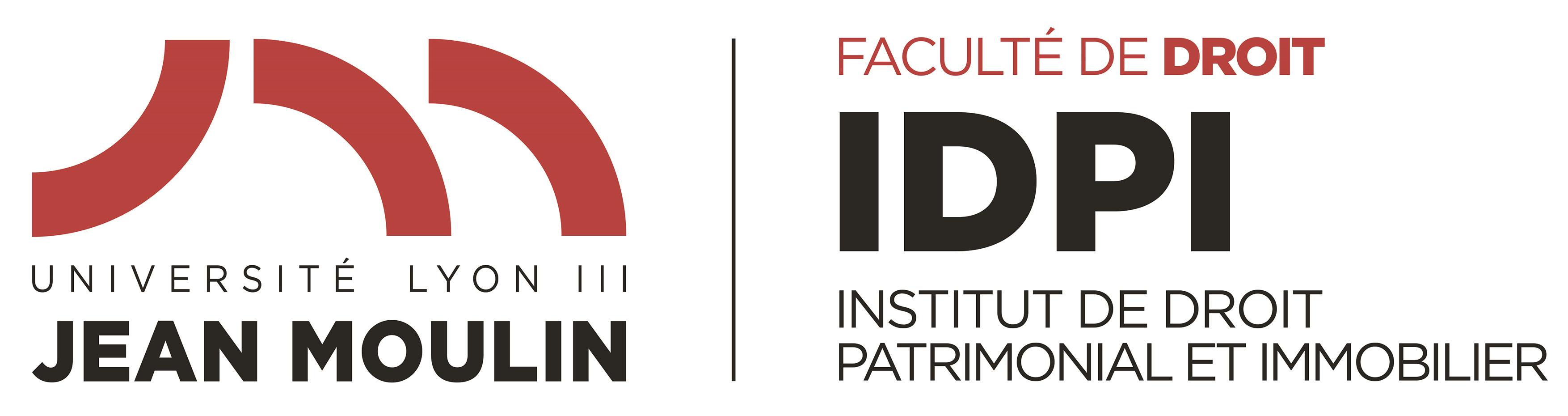 Logo IDPI