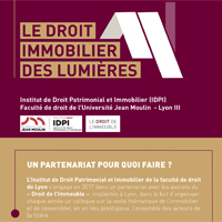 Vignette Colloque IDPI