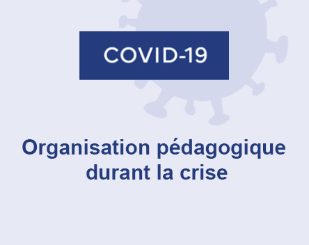 Vignette Covid-19